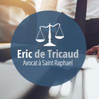 Maître DE TRICAUD, avocat en droit de l'immobilier à Saint-Raphaël, près de Fréjus.